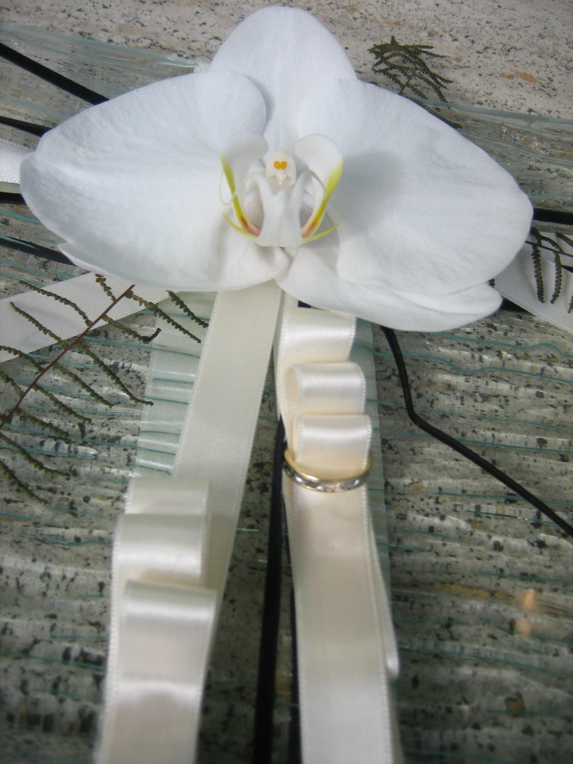 flores/galerie | Événementiel, décoration, cours d'art floral, cours